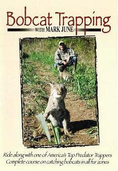 Mark June's